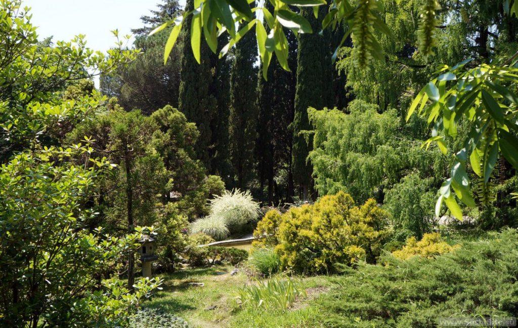 Парк Дендрарий в Сочи