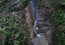 Тисо-самшитовая роща (водопад)